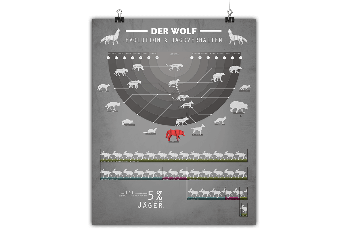 Infografik zum Wolf in Deutschland 3