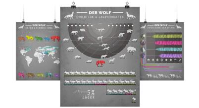 Infografik zum Wolf in Deutschland