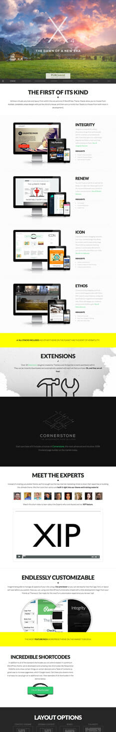 The X Theme - die besten Wordpress Themes 2016