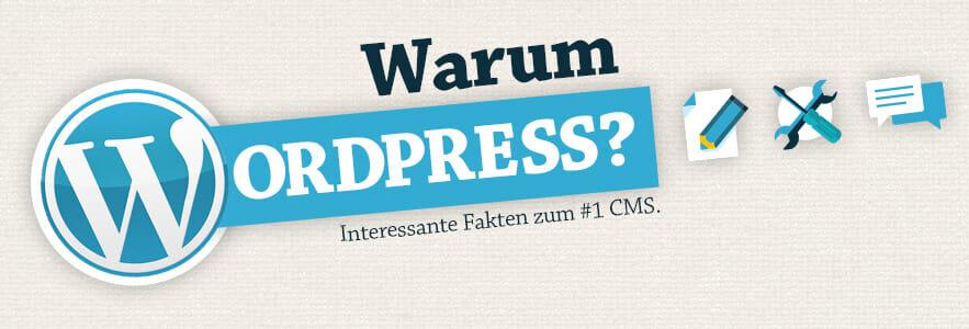 Warum Wordpress - diese WordPress Infografik zeigt die Beliebtheit des #1 CMS