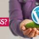 Was ist Wordpress einfach erklärt