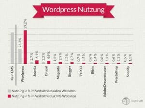 was ist wordpress infografik