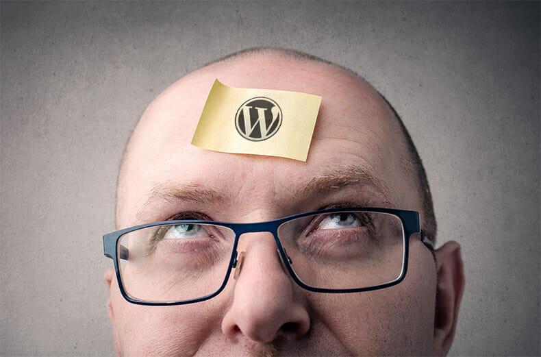 WordPress Nachteile