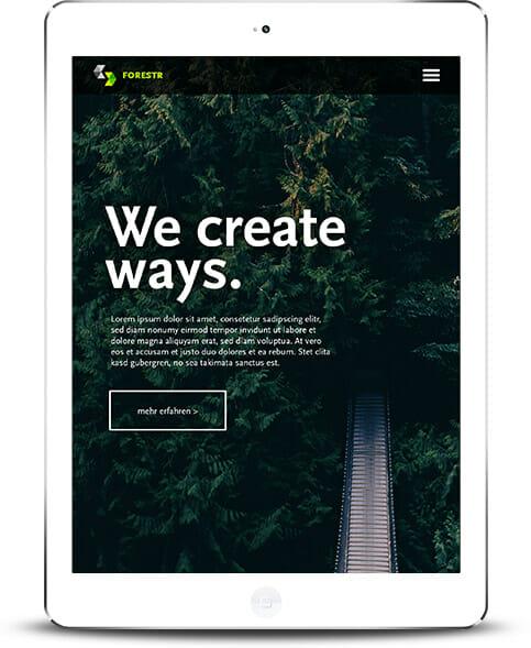 Webdesign und Webentwicklung für Dresden