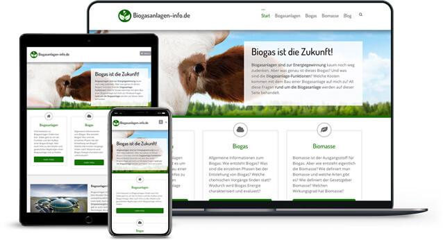 Webdesign Referenz von Biogas Anlagen Portal