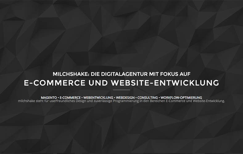 schoene-webseiten-_0098_Digitalagentur für E Commerce Webdesign in Duesseldorf und Sundern