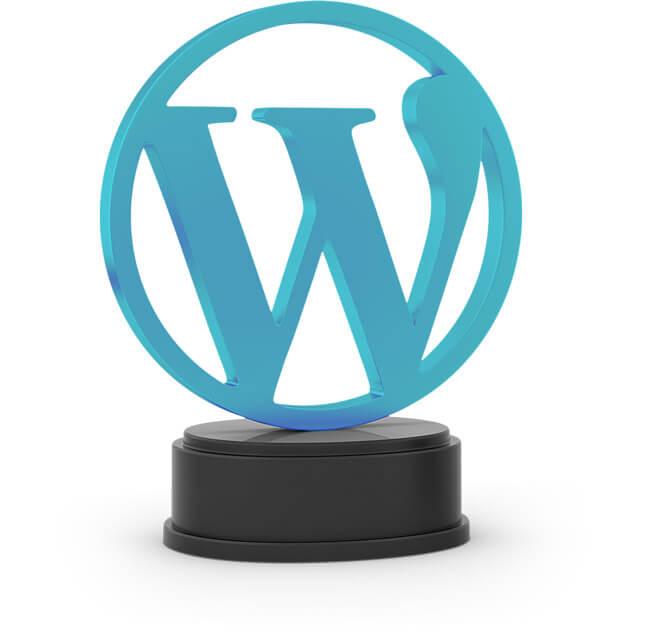 Dresdner Wordpress Agentur spricht Full-Service.