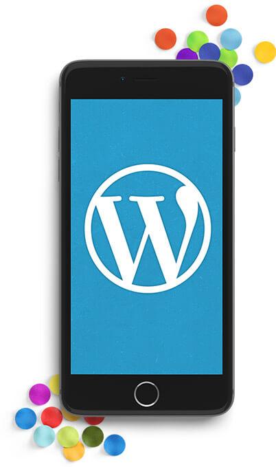 Die Leistungen der Wordpress Agentur Dresden