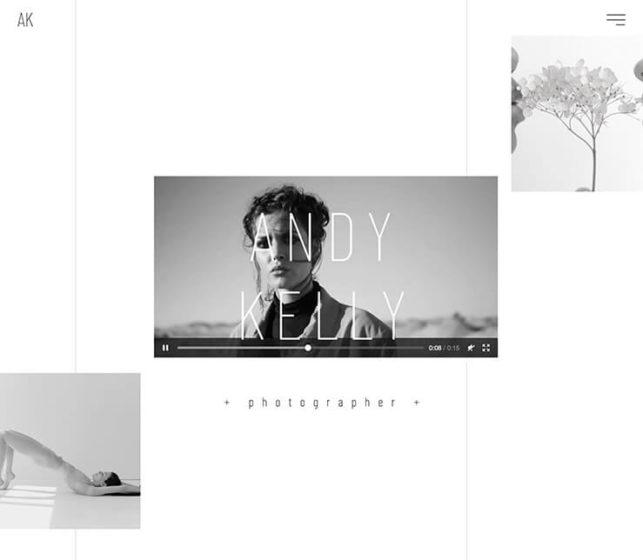 Elementor Theme - ein sehr gutes Theme für dein Fotografie Portfolio