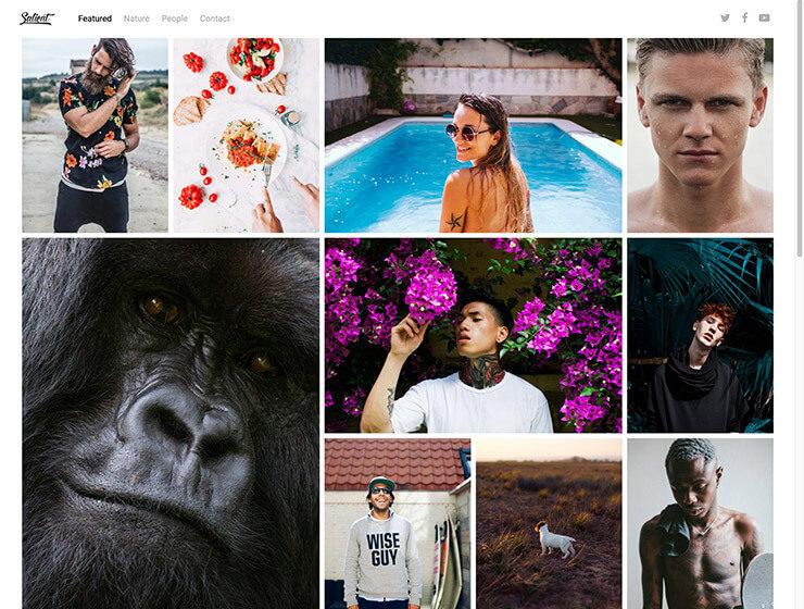 Salient Theme - ein sehr gutes WordPress Theme für Fotografen